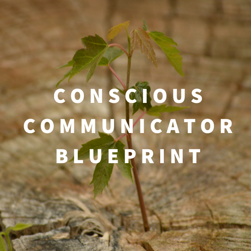Communication Coaching One-on-one Toronto