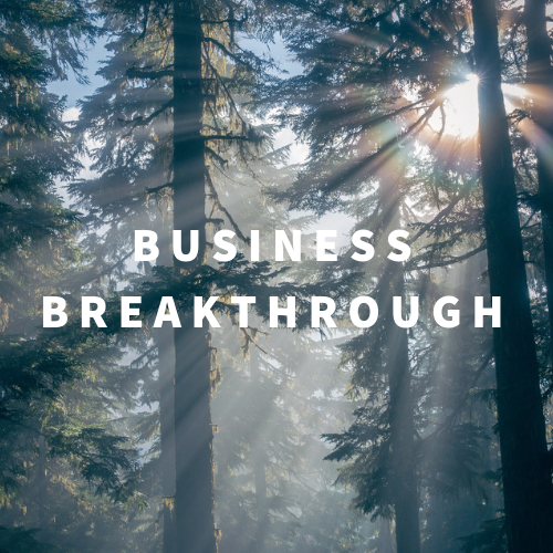Business Breakthrough Organizational Communication Consulting Thumbnail