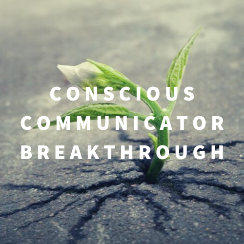 Communication Coach Toronto - Conscious Communicator Breakthrough one-on-one coaching program for entrepreneurs and business leaders