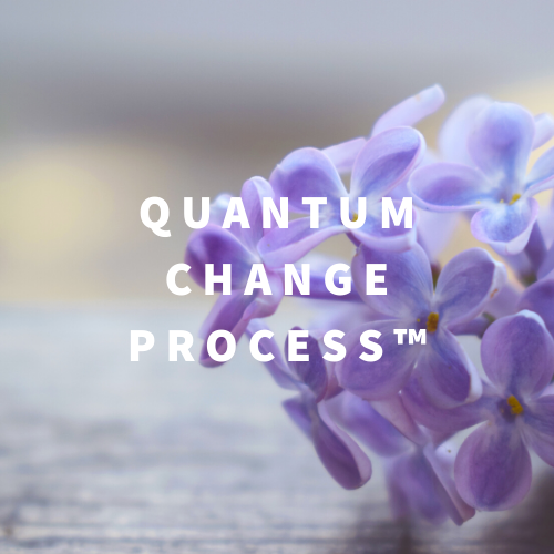 Quantum Change Process information